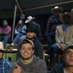 2014_09_Chihuahua_415