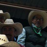 2014_09_Chihuahua_432