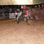 2014_09_Chihuahua_443